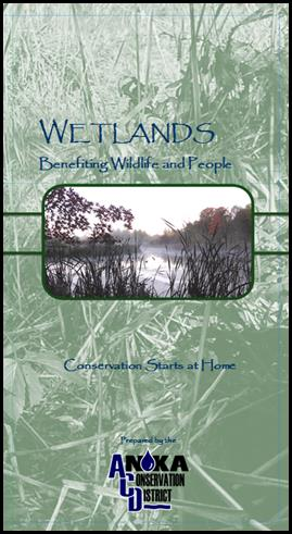 wetlands brochure
